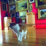 1999_marriott_where-the-cats-at_2